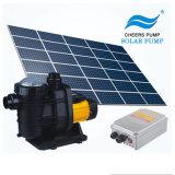 Jintai Garantía de 3 años con la bomba de Piscina Solar MPPT controlador