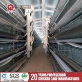 Le matériel en acier galvanisé à chaud Al-Zinc Eqiupment de volaille à la grande ferme de la couche