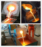 Machine de fonte Wh-VI-60 en verre en aluminium d'or de chauffage par induction de Zhengzhou Gou