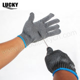 Филе рукавицы, промысел решения (LFG168)