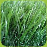 Moquette artificiale dell'erba della decorazione riccia cinese