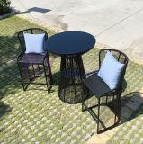 Vector y silla simples de cena del balcón del jardín del té del departamento de hotel del ocio al aire libre negro moderno de la barra