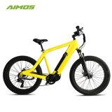 حارّة يبيع [إبيك] جبل درّاجة كهربائيّة مع [دريف موتور] منتصفة