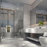 Baumaterial-glasig-glänzende keramische Badezimmer-Wand-Innenfliese