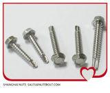 L'Individu-Perçage Hex de tête de rondelle de l'acier inoxydable 18-8/304/316/410 visse St4.2