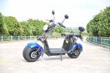 Ес одобрил 1500W 60V электрический Харлей скутер города Коко