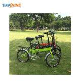 가장 새로운 다기능 소형 크기 E 자전거