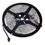 striscia impermeabile di 12V SMD 5050 RGB LED