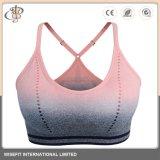 La mujer perfecta OEM Fitness Sport Bra