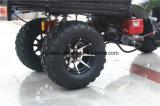 Moto 110cc 125cc de ATV ATV Gas para la venta