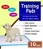 工場ちっぽけでちっぽけなパッドをトレインしている極度の吸収性の大型ペット子犬