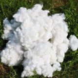 Pta de Maagdelijke Materiële Holle Vervoegde Voornaamste Vezel van de Polyester
