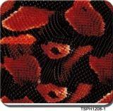 Film hydrographique d'impression de transfert de l'eau de film de peau animale de largeur de Tsautop 1m/0.5m de qualité plongeant le film Tspd1208-1