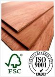 18mm Laminated Plywood с E1 Glue Poplar Core BB/CC Grade