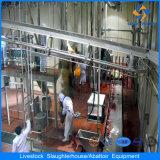 Macello automatico dell'acciaio inossidabile del fornitore della Cina