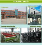 Impresora de inyección de tinta eco-solvente (impresora interior y exterior)