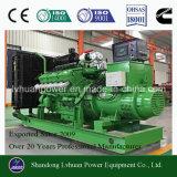 Ensemble de générateur de biogaz Cummins 300kw à haute efficacité Adoptez le gaz de marais à la biomasse, GNC