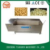 Machine de lavage et d'écaillement de patate douce de la CE avec la rondelle de balai