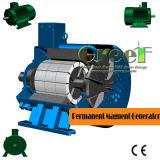 500 об/мин постоянного магнита генератор для ветра и турбины гидроуправления