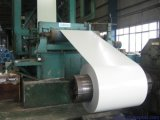 La qualità principale SPCC SGCC PPGI ha preverniciato la bobina d'acciaio galvanizzata