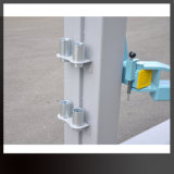 Elevatore idraulico dell'automobile dell'alberino mobile portatile della colonna due