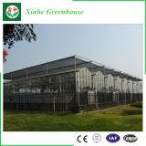 Preço considerável usado comercial da estufa de alumínio do policarbonato do frame