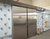 Обрабатывать продуктов моря и мяса Brad мороженного холодильных установок холодной комнаты