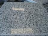 De grijze Tegels van het Graniet