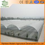 Invernadero de plástico Polytunnel multi industrial