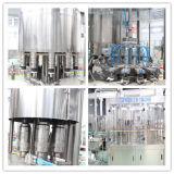 De volledige Automatische Installatie van het Mineraalwater van de Fles van het Huisdier Zuivere