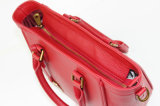 تصاميم فريدة [إيوروبن] من حدث تقليديّ حقيبة يد لأنّ نساء رف حقائب