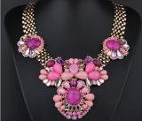 多彩で総合的な宝石用原石の不足分のネックレス、過大視される方法ネックレス