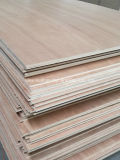 Cara de Meranti/grado trasero de la base BB/CC del álamo de la madera contrachapada