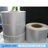 La Chaleur-Resistant mate Highquality Pet Adhesive Sticker de 30mm*10mm, Pet Stickers de Silver pour Main Board (PT5100)