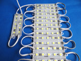 2 años de módulo de la garantía 5050 LED para hacer publicidad
