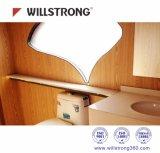 Matière composite en aluminium de panneau modulaire durable de Chambre de Willstrong