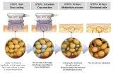 4 Gewicht van het Verlies van het Lichaam Cryolipolysi van handvatten het Slimme Slanke
