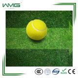安く総合的な草表のテニスコート