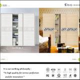현대 침실 셔터 문 도매 옷장