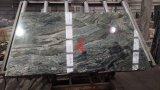 Livro Verde Granito Jadeite Azulejos polido&Brames&Bancada