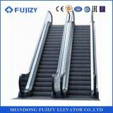Fujizy Innenrolltreppe mit 30 Jobstepp-Breite des Grad-1000mm