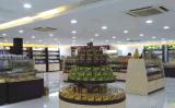 8 pouces 2.5inch 5pouce 15W Downlight LED haute puissance pour des magasins