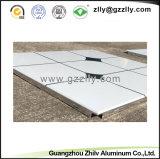 الصين مموّن [بويلدينغ متريل] سقف تصميم صنع وفقا لطلب الزّبون معدن سقف لوح زخرفيّة