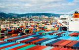 Frete do transporte da consolidação de LCL de Guangzhou a Romania
