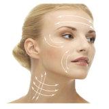 Cuerda de rosca de elevación de Pdo del cuello de la alta calidad