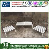 Nuevo diseño tejido de la correa de sofá muebles de exterior