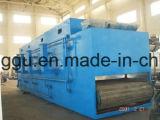 Dwt2-10 Drogende Machine van het Fruit van de Transportband van de reeks de Commerciële