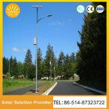 Kundenspezifische Solar-LED, die Solarstraßenlaternebeleuchtet