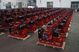 Quanchai motor diesel de tecnología de la bomba de agua/bomba de incendio/uso marino
