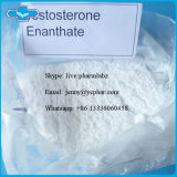 Aufbauendes rohes Steroid Hormon-Puder-Testosteron Enanthate CAS 315-37-7